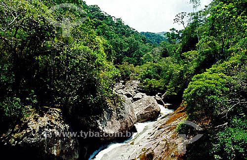 Rio Campo Belo - Parque Nacional de Itatiaia - Floresta Atlântica - RJ - Brasil  - Itatiaia - Rio de Janeiro - Brasil
