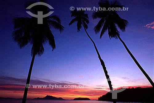 Praia de Palmas - Ilha Grande - RJ - Brasil  - Angra dos Reis - Rio de Janeiro - Brasil