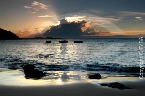Praia da Tartaruga - Búzios - Costa do Sol - Região dos Lagos - RJ - Brasil  - Armação dos Búzios - Rio de Janeiro - Brasil