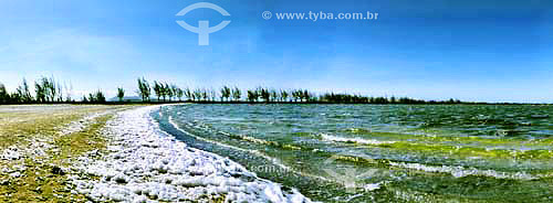 Lagoa com espuma produzida pelo vento constante e talvez devido a maior salinidade - Lagoa de Araruama - Araruama - RJ - Brasil - Agosto de 2002  - Araruama - Rio de Janeiro - Brasil