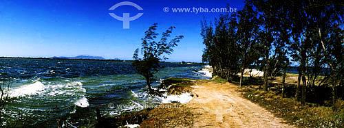 Espuma provocada pela agitação da água muito salgada e pelo vento - Lagoa de Araruama - Costa do Sol - Região dos Lagos - RJ - Brasil  - Araruama - Rio de Janeiro - Brasil
