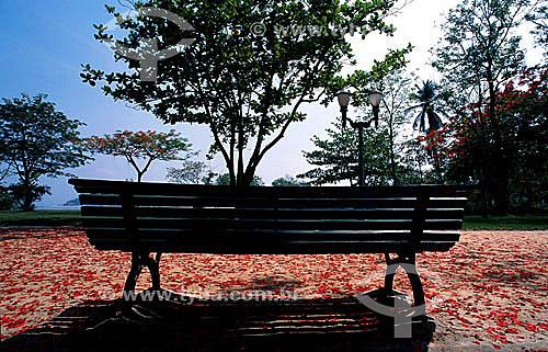 Banco de praça no Parque Darke de Matos - Paquetá, ilha na Baía de Guanabara - RJ - Brasil  - Paquetá - Rio de Janeiro - Brasil