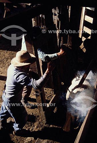 Homens marcando ovelha com ferro quente - RS - Brasil  - Rio Grande do Sul - Brasil