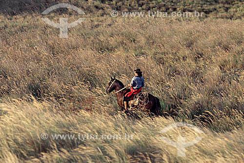 Gaucho à cavalo nos pampas gauchos - Rio Grande do Sul - Brasil  - Rio Grande do Sul - Brasil