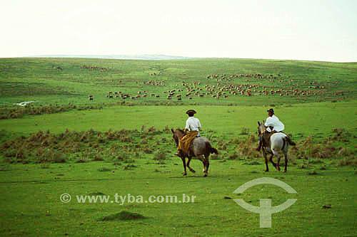 Dois homens à cavalo no campo de vacaria (coxilhas gaúchas) com utilização tradicional para pecuária - RS - Brasil   - Rio Grande do Sul - Brasil