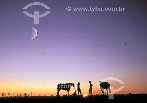 Vaqueiros e cavalos ao entardecer nos pampas Gaúchos com a lua ao fundo -  Interior do Rio Grande do Sul - Brazil  - Rio Grande do Sul - Brasil