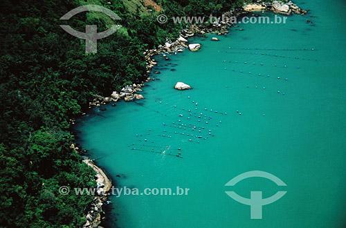 Estaleirinho - litoral de Santa Catarina - Brasil  - Santa Catarina - Brasil