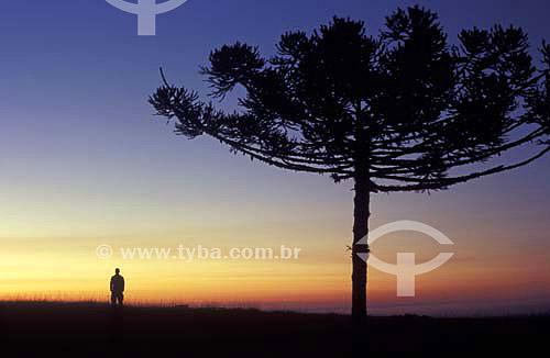 Silhueta de um homem ao anoitecer na Serra da Boa Vista - Rancho Queimado - Santa Catarina - Brasil - Maio de 2005  - Rancho Queimado - Santa Catarina - Brasil