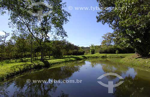Horto Florestal em Guarulhos - SP - Brasil  - Guarulhos - São Paulo - Brasil