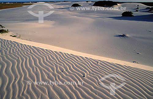 Dunas de areia na praia do Saco do Rio Real - Sergipe - Brasil  - Estância - Sergipe - Brasil