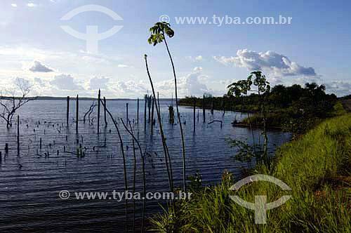 Lago de Palmas, represa da Usina Hidroelétrica de Lajeado -  Tocantins - Brasil  - Palmas - Tocantins - Brasil