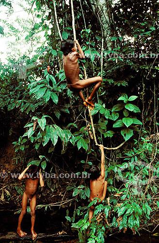 Indios Ianomamis pendurados em cipós - Roraima - Brasil / Data: 1990