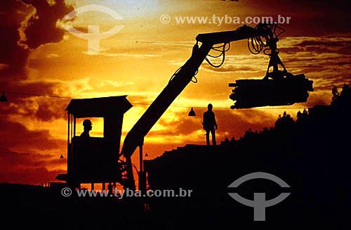 Indústria de papel - Silhueta de trabalhadores e empilhadeira mecânica transportando toras de madeira