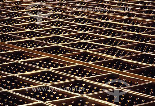 Depósito de caixas de cerveja da Cervejaria Kaiser - RS - Brasil  - Rio Grande do Sul - Brasil