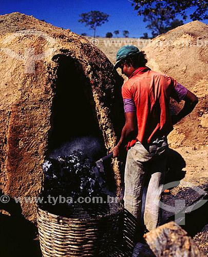 Carvoeiro em forno de carvão