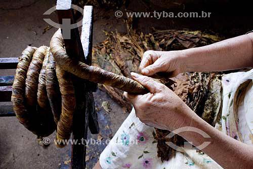 Acochadeira enrolando o fumo de rolo - Piracanjuba - GO - Brasil   - Piracanjuba - Goiás - Brasil