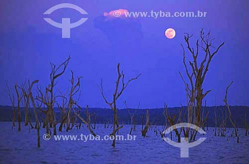 Lua sobre o lago da hidrelétrica de Balbina - município de Presidente Figueiredo - AM - Brasil - outubro de 2001  - Presidente Figueiredo - Amazonas - Brasil