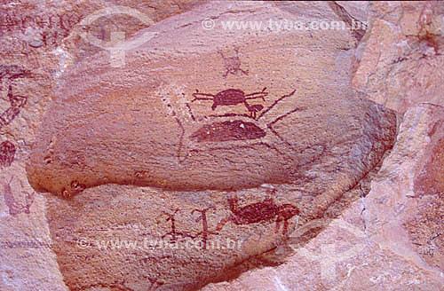 Pinturas rupestres - Parque Nacional Serra da Capivara - São Raimundo Nonato - PI - Brasil  O Parque é Patrimônio Físico, Ecológico e Pré-Histórico Mundial pela UNESCO desde 13-12-1991e Patrimônio Histórico Nacional desde 28-09-1993.  - Piauí - Brasil