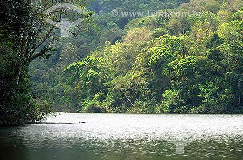 Represa do Camorim localizada em Jacarépaguá - Parque Estadual da Pedra Branca - Rio de Janeiro - RJ - Brasil  - Rio de Janeiro - Rio de Janeiro - Brasil