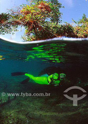 Foto a meia-água com mergulhadora em Angra dos Reis - RJ - Brasil  - Angra dos Reis - Rio de Janeiro - Brasil