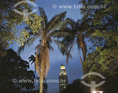 Palmeira Jerivá com prédio da Central do Brasil ao fundo - Rio de Janeiro - RJ - Brasil  - Rio de Janeiro - Rio de Janeiro - Brasil
