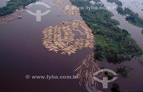 Transporte ilegal de madeira - Troncos de árvores no rio - Rio Purus  - Amazonas - Brasil
