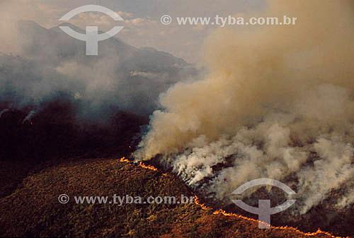 Desmatamento - Queimada no Parque Nacional de Itatiaia - Mata Altlântica - RJ - Brasil / Data: 2001