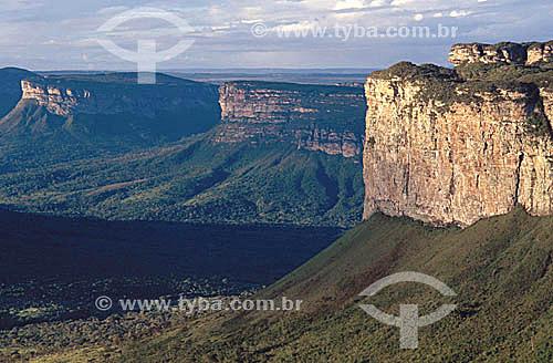 Morro do Camelo (Camel Hill) - National Park of the Chapada Diamantina - Cerrado ecosystem - Bahia state - Brazil / Data: 2008