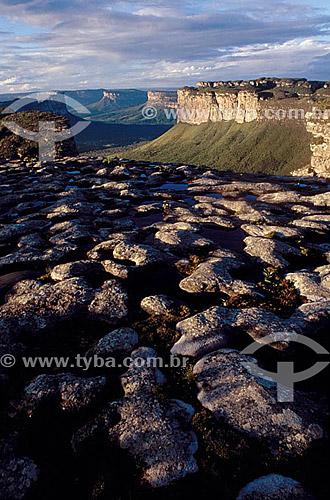 Morro do Camelo - Parque Nacional da Chapada Diamantina - Cerrado - BA - Brasil  - Bahia - Brasil