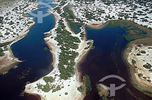 Lago - Jurubatiba - Parque nacional Restinga de Jurubatiba - RJ - Brasil  - Rio de Janeiro - Brasil