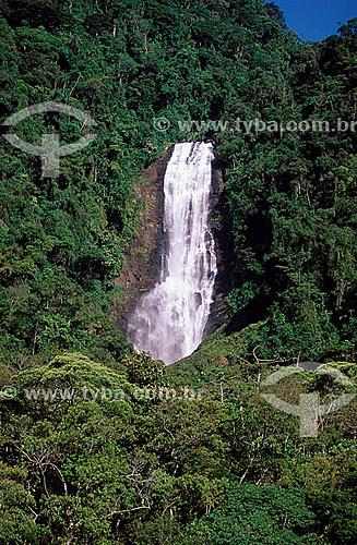 Cachoeira no Parque Nacional da Serra da Bocaina - SP - Brasil  - São José do Barreiro - São Paulo - Brasil