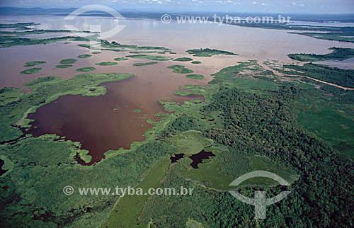 Vista aérea do Pantanal em época de cheia - Matogrosso - Brasil  - Mato Grosso - Brasil
