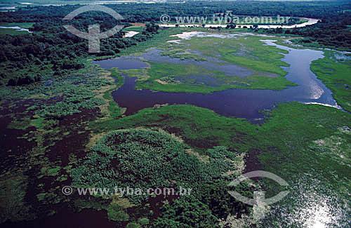Vista aérea do Pantanal em época de cheia - Matogrosso - Brasil - Data: 2005