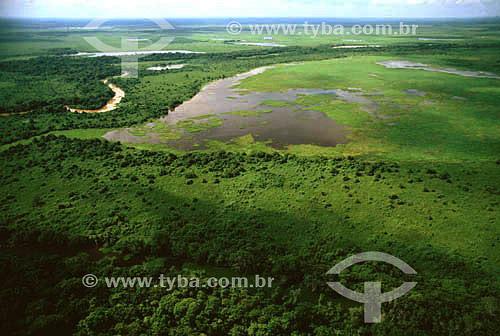 Vista aérea do Pantanal - PARNA do Pantanal Matogrossense  - MT - Brasil - Data: 2005  A área é Patrimônio Mundial pela UNESCO desde 2000 /