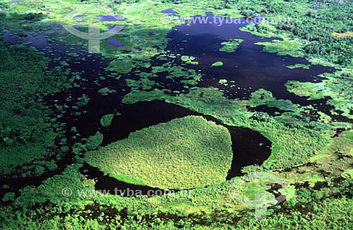 Vista aérea - enchente no Pantanal - PARNA do Pantanal Matogrossense  - MT - Brasil - Data: Fevereiro de 2007  A área é Patrimônio Mundial pela UNESCO desde 2000.