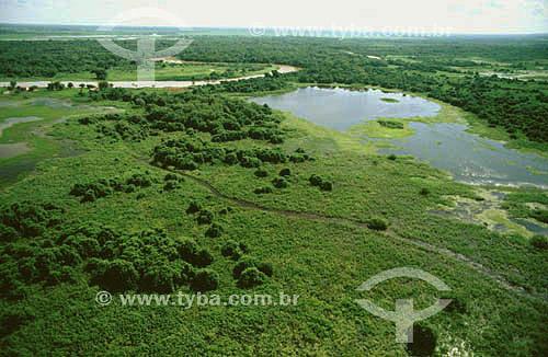 Vista aérea do Pantanal - PARNA do Pantanal Matogrossense  - MT - Brasil - Data: 2005  A área é Patrimônio Mundial pela UNESCO desde 2000.