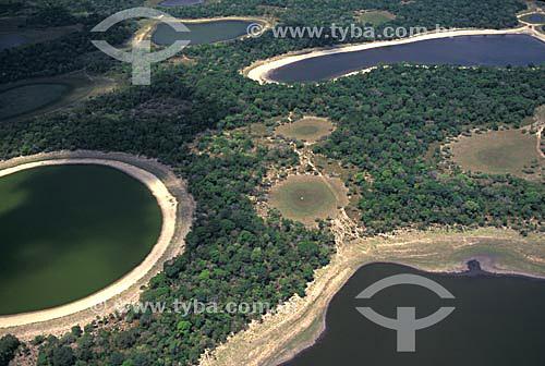 Vista aérea do Pantanal - Nhecolândia - Mato Grosso do sul - MS - Brasil / Data: 2005