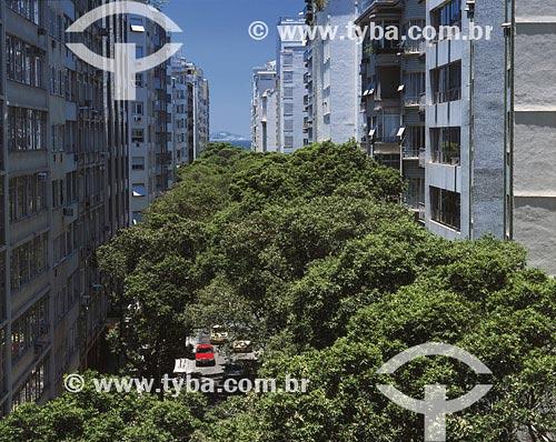 Assunto: Árvore encobrindo rua BolívarLocal: Copacabana - Rio de Janeiro - RJData: 25/03/2005