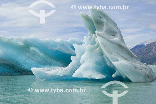 Assunto: Iceberg no Lago ViedmaLocal: Parque Nacional Los Glaciares - PatagoniaPaís: ArgentinaData: 22/01/2007