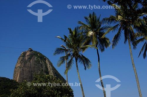 Assunto: Pão de AçúcarLocal: Rio de Janeiro - RJData: 17/11/2006