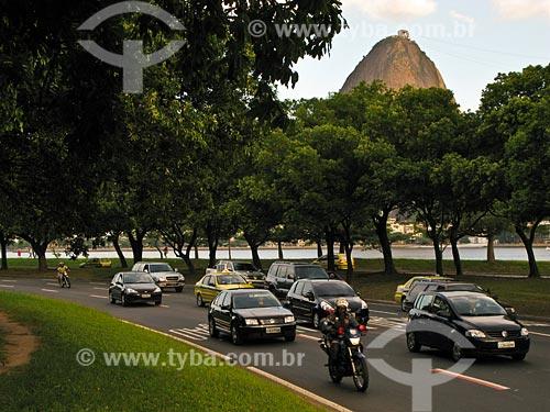 Assunto: Aterro do Flamengo com Pão de Açúcar ao fundo / Local: Rio de Janeiro - RJ / Data: 02/2008