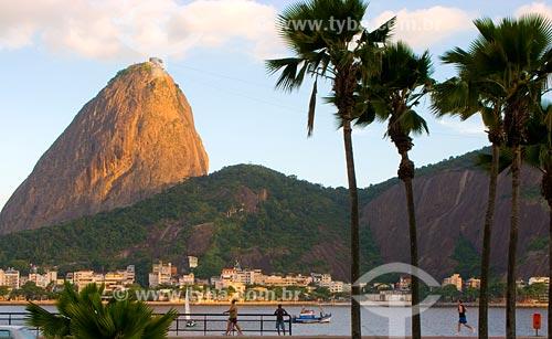 Assunto: Pão de Açúcar visto do Aterro do Flamengo / Local: Rio de Janeiro - RJ / Data: 02/2008