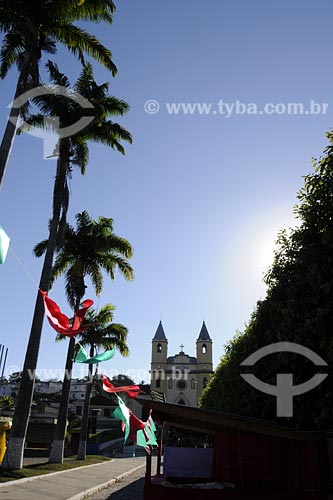 Assunto: Coqueiros e igreja ao fundo / Local: Miracema - RJ / Data: 06/2008