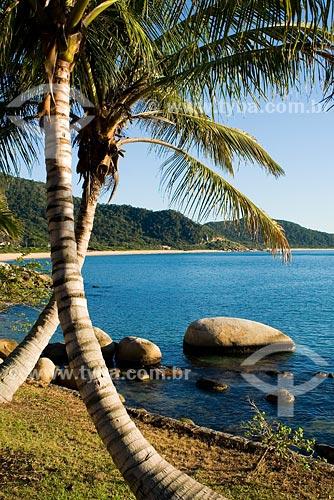 Assunto: Praia de Taquara / Local: Balneário Camboriú - SC - Brasil / Data: 10/06/2008