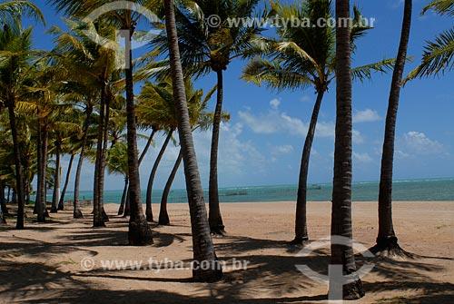 Assunto:  praia Ponta Verde / Local: Maceió - AL / Data: novembro 2007