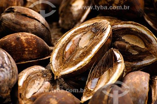 Assunto: Cocos de babacú / Local: Miranda do Norte - MA / Data: 08/2008