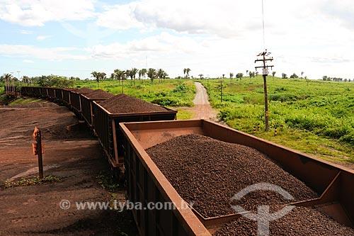 Assunto: Trem de carga (ferro gusa) em trecho da Estrada de Ferro Carajás / Local: Marabá - PA / Data: 08/2008