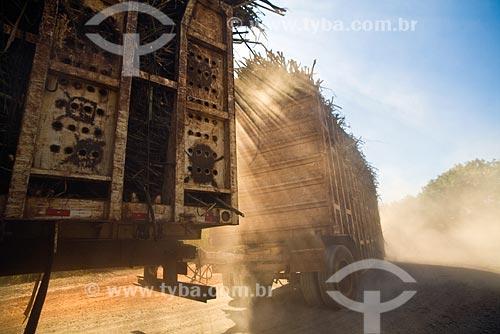 Assunto: Transporte de cana-de-açúcar dos campos ao moínho para produção de etanol e açúcar / Local Cosmopolis - SP - Brasil / Data: Maio 2008
