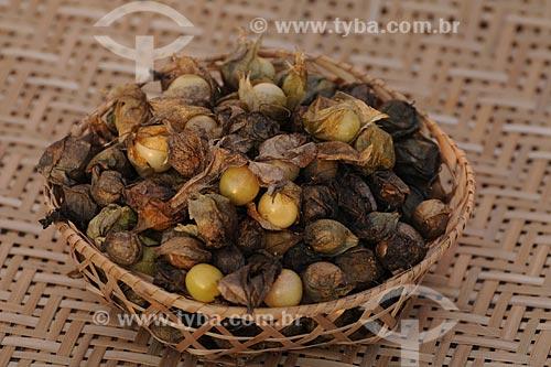 Assunto: Cesto com Fruto do Camapu / Local: Belém (PA) / Data: 13 de Outubro de 2008