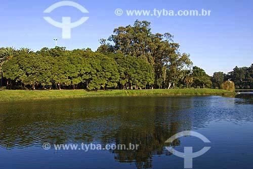 Assunto: Parque do Ibirapuera - Jacarandá-mimoso (Jacaranda Mimosaefolia) no outono / Local: São Paulo (SP) / Data: 10 de Junho de 2007